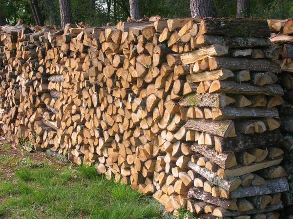 Bois de chauffage et petit travaux forestier for Entreposer bois de chauffage
